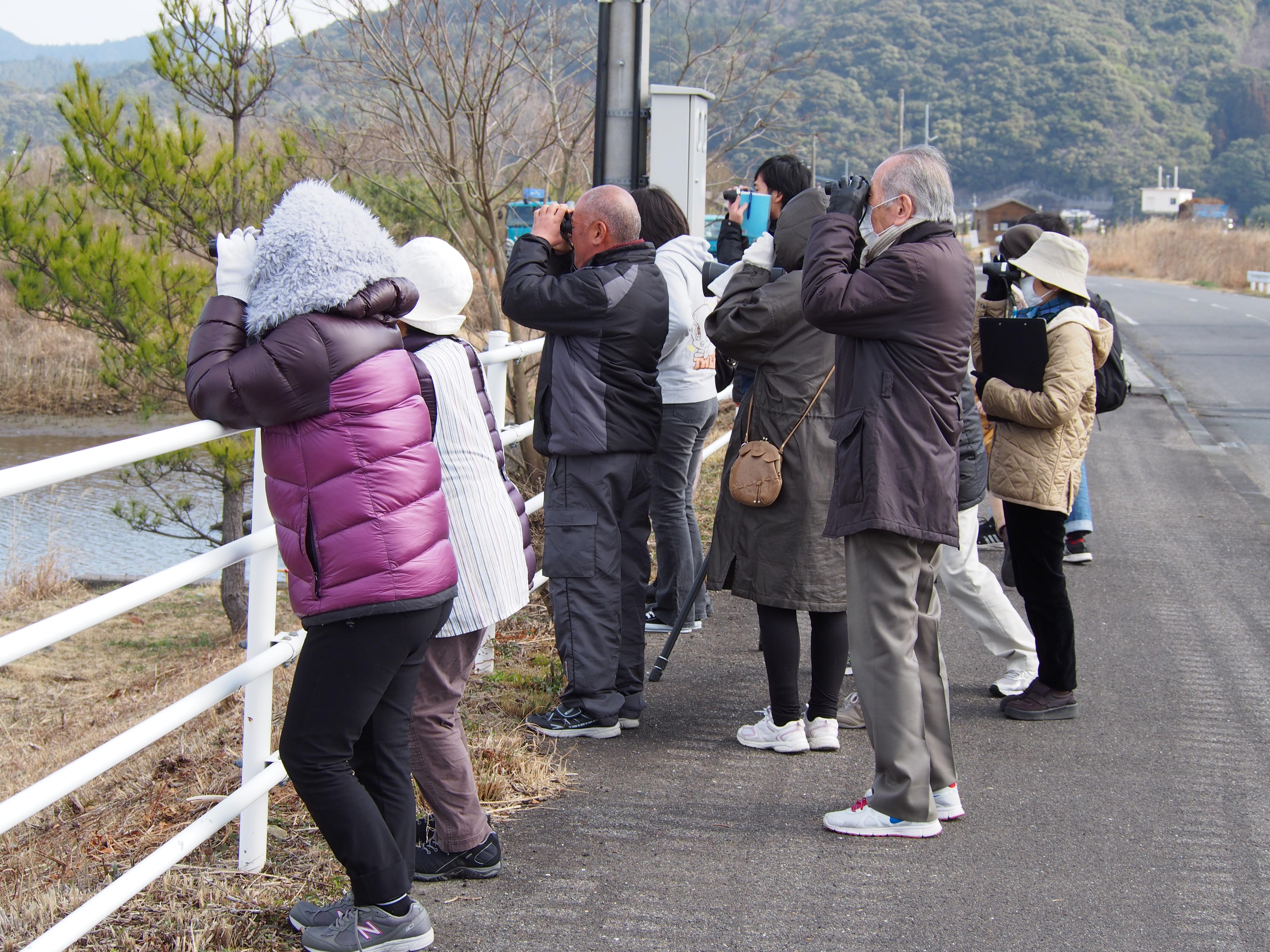 友内川野鳥観察会の様子
