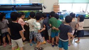 ミニ水族館が人気です